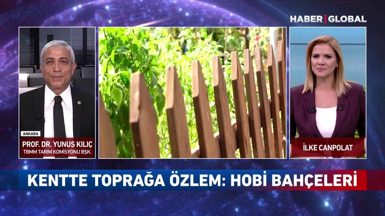 Akankah Hobby Gardens Dilarang?  Mengapa Minat pada Hobby Gardens Meningkat?  Jalan Zonasi untuk Lahan Pertanian