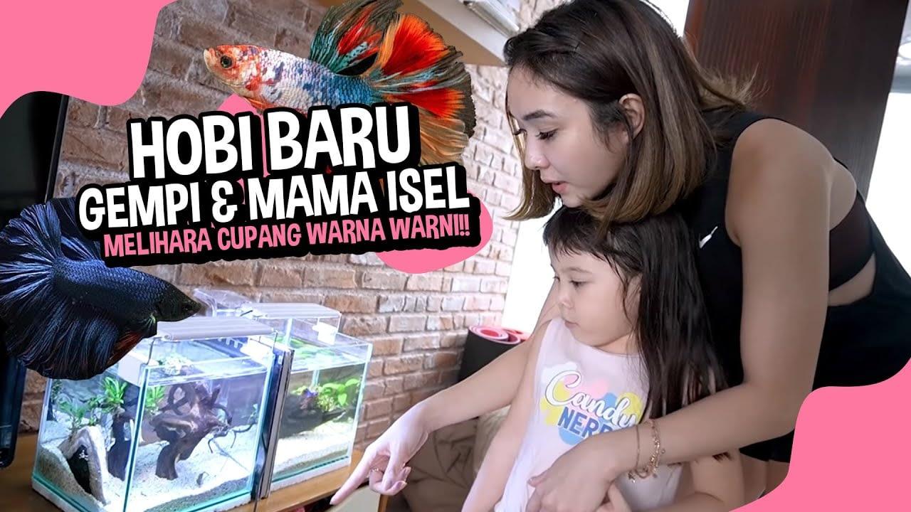 HOBI BARU GEMPI & MAMA ISEL.. MELIHARA CUPANG WARNA WARNI!!