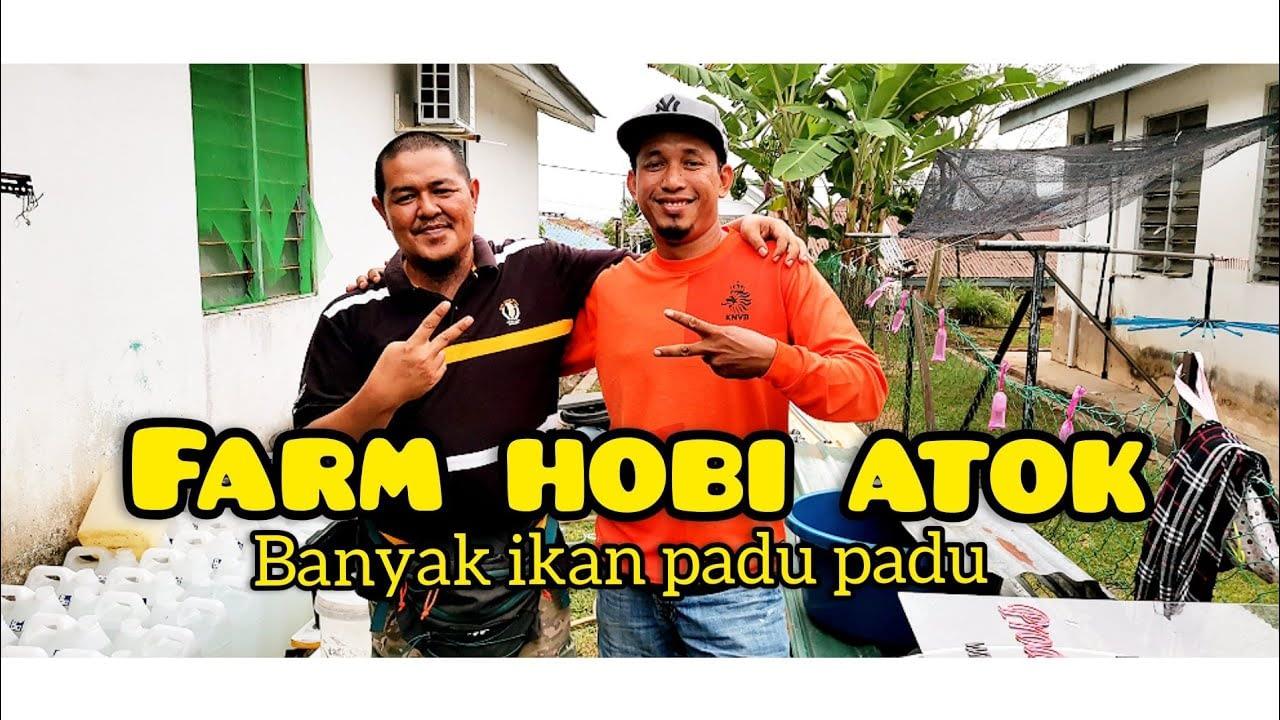 Mengunjungi atok hobby farm // betta fish padu2